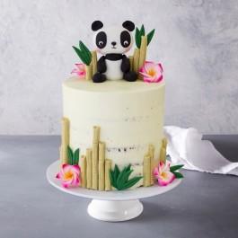 Cool Panda Bear Birthday Cake Personalised Birthday Cards Veneteletsinfo