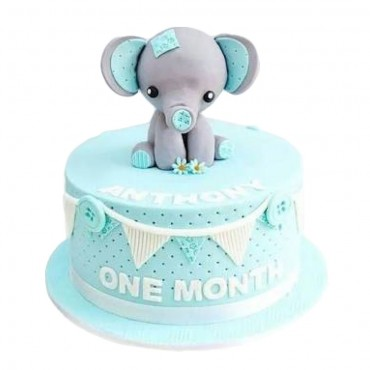 Baby Elephant Birthday Cake
