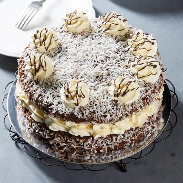 Chocolate Lamington Sponge
