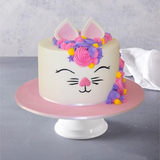 Remarkable Kitty Kat Birthday Cake Funny Birthday Cards Online Fluifree Goldxyz