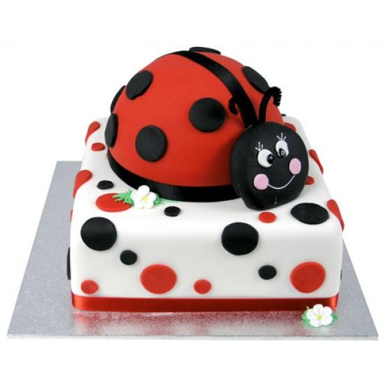 Ferguson Plarre General Birthday Cakes