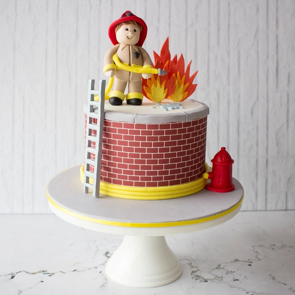 Astounding Fireman Celebration Cake Funny Birthday Cards Online Alyptdamsfinfo