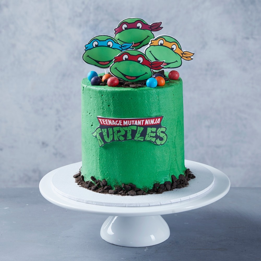 Groovy Teenage Mutant Ninja Turtles Birthday Cake Funny Birthday Cards Online Fluifree Goldxyz
