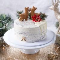 Chocolate Vanilla Bean Christmas Cake