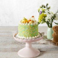 Easter Mini Cake - Mud