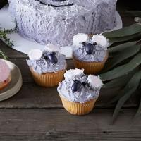 Koala Cupcakes - Chocolate
