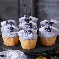 Koala Cupcakes - Vanilla