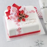 Iced Parcel Mud Cake - Medium