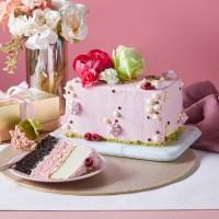 Neapolitan Cake (Raspberry, Chocolate & Vanilla)